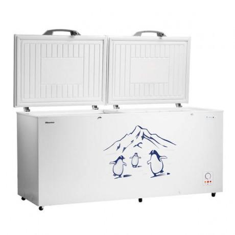 Hisense 550L Freezer FC663D4BWB